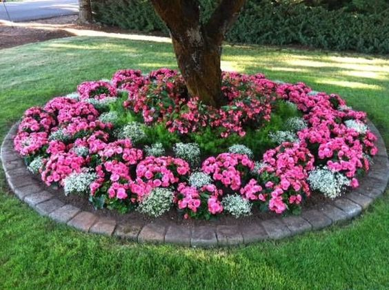 Flower bed surrounding tree