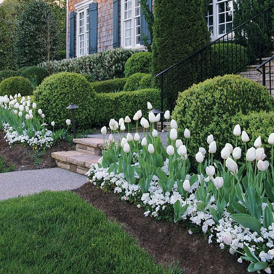Front lawn flowers