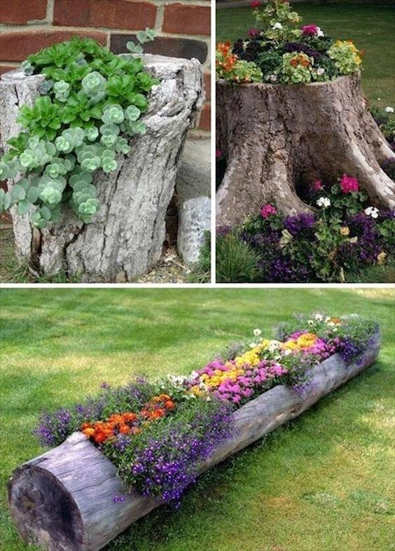 Garden tree stumps
